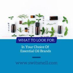 best essential oils brands 2020 01